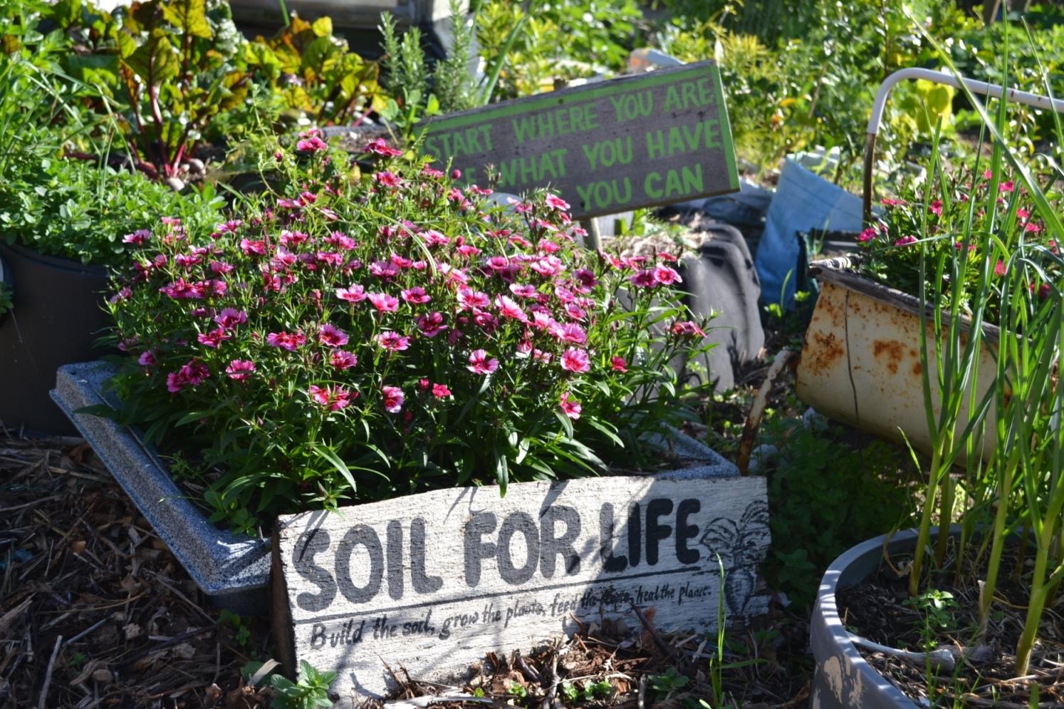 spring open garden at soil for life