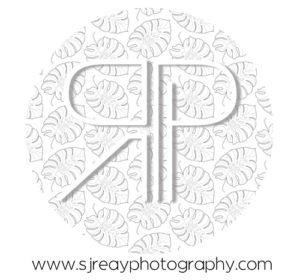REAY PHOTO/VIDEO/DESIGN
