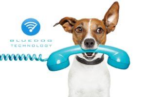Bluedog Technology Wireless Internet