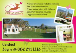 Luxury Accommodation and Daycare for Small Dogs