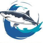 Save Our Seas Shark Education Centre